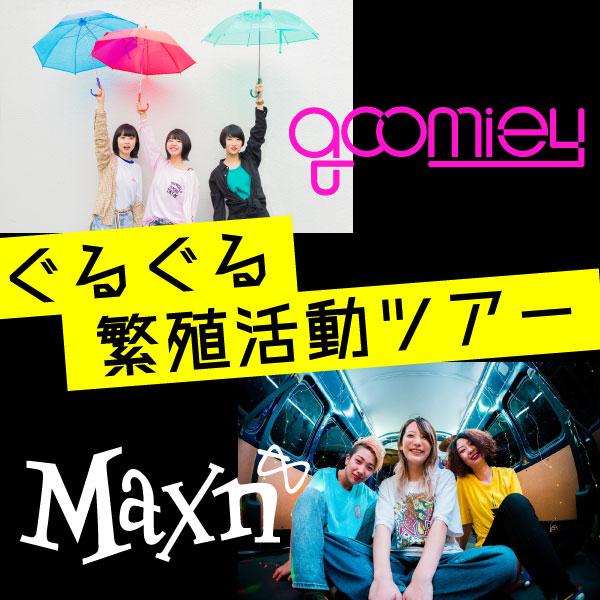 goomiey / Maxn ぐるぐる繁殖活動ツアー